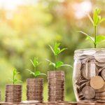 投資初心者必見! 再投資型VS毎月分配型 どっちの投資信託を選ぶべき?